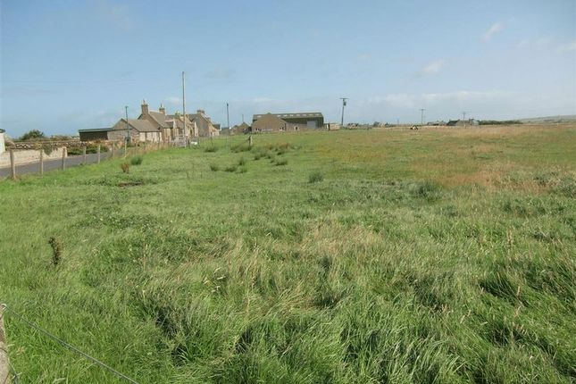 Photo 3 of Plots For Sale Scarfskerry, Thurso, Caithness KW14