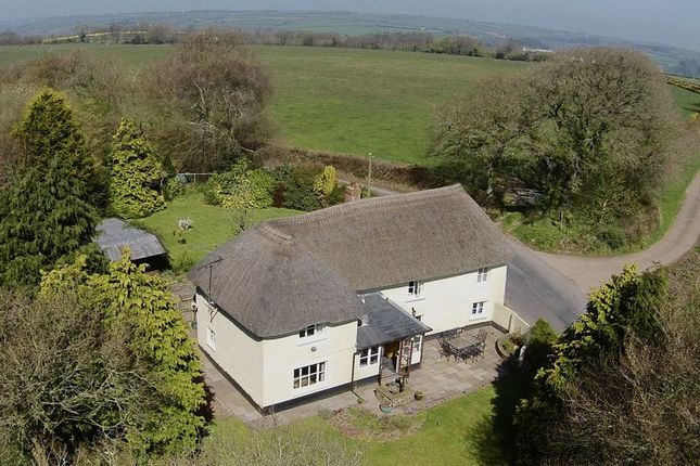 Thumbnail Detached house for sale in East Worlington, Crediton