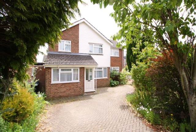 Thumbnail Property to rent in Salisbury Road, Canterbury, Kent