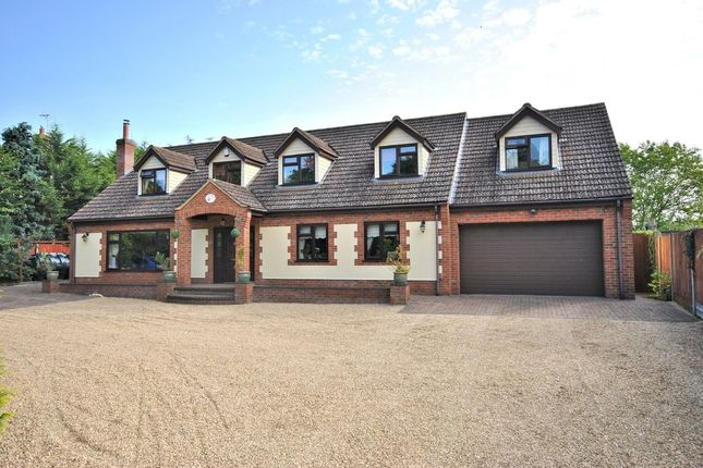 Thumbnail Detached house for sale in East Winch Road, Ashwicken, King's Lynn
