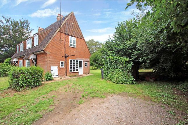 Picture No. 16 of Amberley Farm Cottages, Amberley Lane, Milford, Godalming GU8