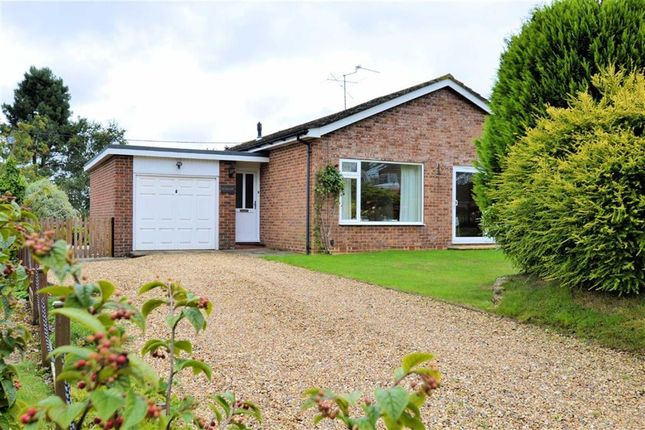Thumbnail Detached bungalow for sale in Shop Lane, Leckhampstead, Berkshire
