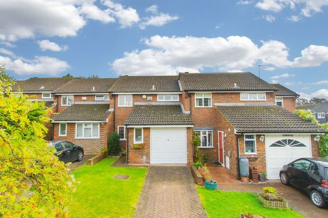 Thumbnail Terraced house for sale in Owen Gardens, Woodford Green