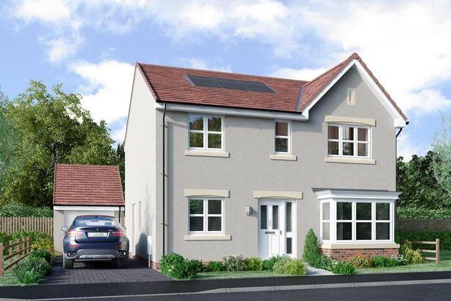"Thumbnail Detached house for sale in ""Grant"" at Lasswade Road, Edinburgh"