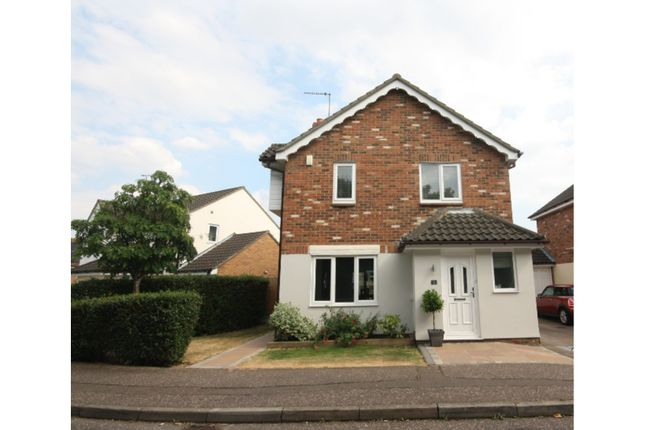 Thumbnail Detached house for sale in Fulcher Avenue, Chelmsford