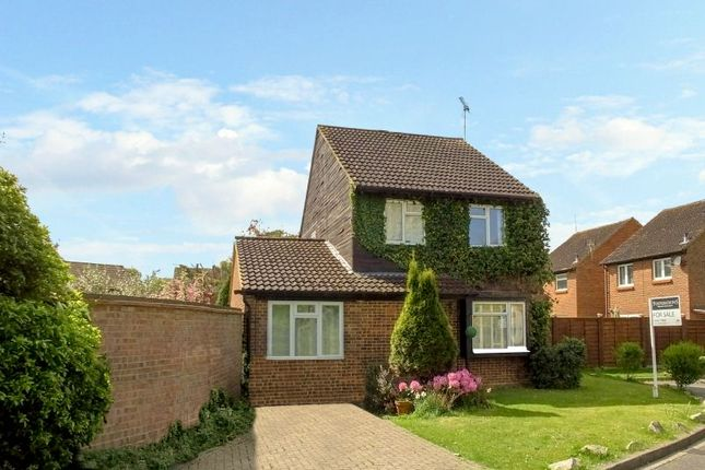 Thumbnail Detached house for sale in Fenwick Close, Horsell, Woking