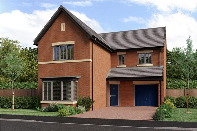 """Thumbnail Detached house for sale in """"The Fenwick"""" at School Aycliffe, Newton Aycliffe"""