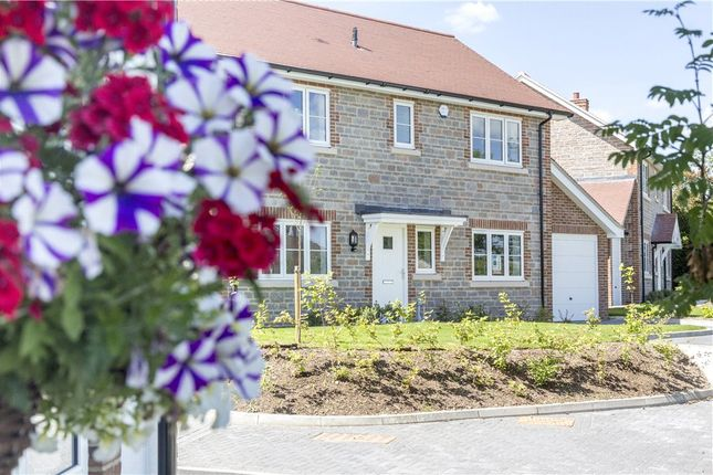 Thumbnail Detached house for sale in Whitebeam House, Ash Green, West Bourton Road, Bourton