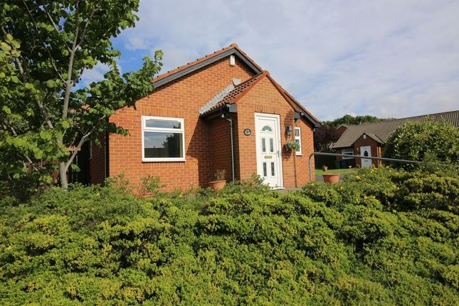 Thumbnail Detached bungalow for sale in Beaconside, South Shields