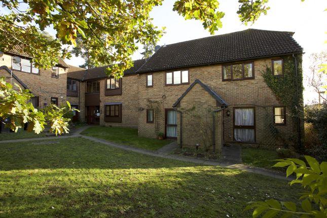 Thumbnail Maisonette to rent in Bluebell Rise, Lightwater