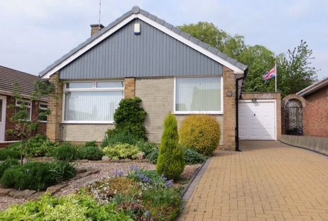 Thumbnail Bungalow to rent in Mapperley Orchard, Arnold, Nottingham