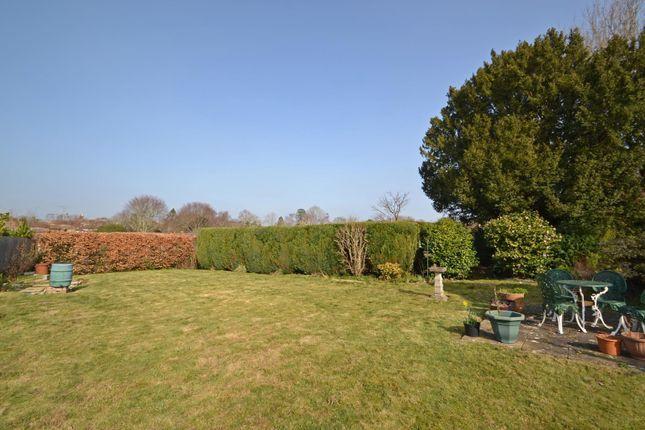 Garden 2 of Church Street, Pulborough, West Sussex RH20