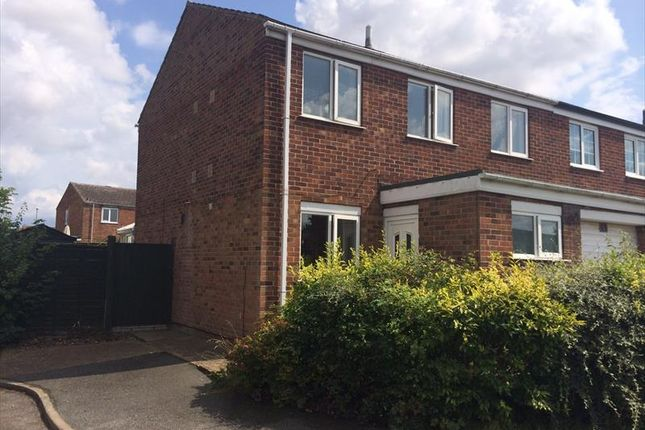 3 bed semi-detached house to rent in Beverley Close, Holton Le Clay
