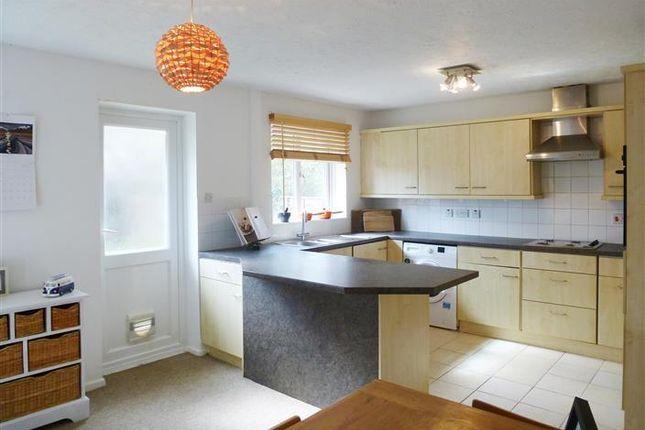 Thumbnail Property to rent in Pine Close, Taunton