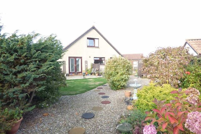 Thumbnail Detached house for sale in Langhouse Green, Crail, Fife