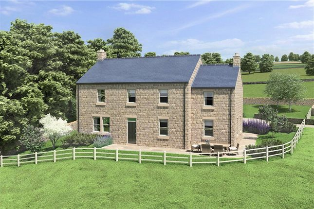 Thumbnail Detached house for sale in Stumps Lane, Darley, Harrogate, North Yorkshire