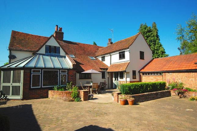Thumbnail Detached house for sale in Main Road, Boreham, Chelmsford
