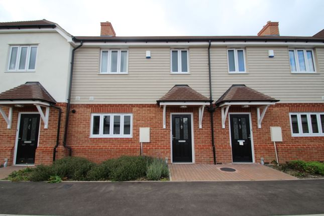 Thumbnail Terraced house to rent in Blackthorn Grove, Orpington
