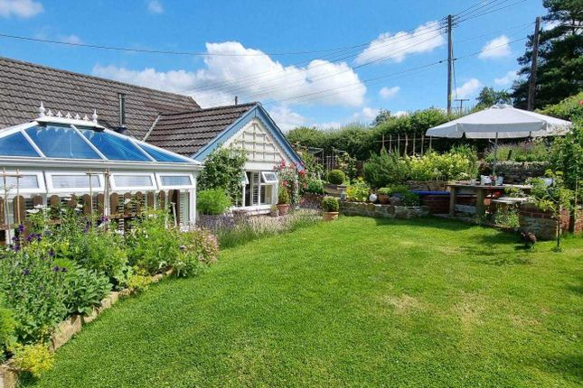 Thumbnail Semi-detached house for sale in Howley, Chard