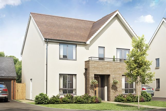 Thumbnail Detached house for sale in The Mayne, Bramshall Meadows, Uttoxeter
