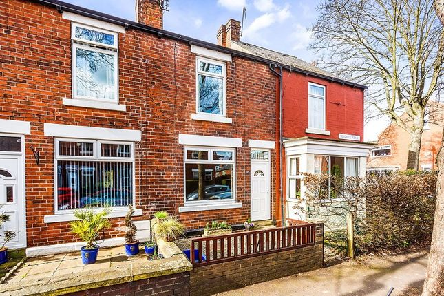 Thumbnail Terraced house for sale in Mitchell Road, Sheffield