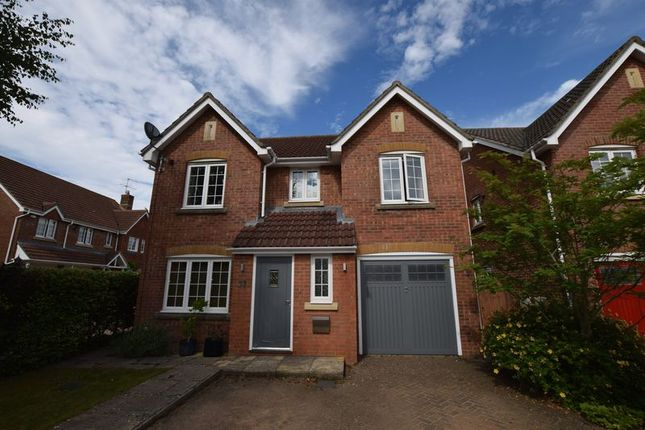 Thumbnail Detached house to rent in Shipley Close, Alton