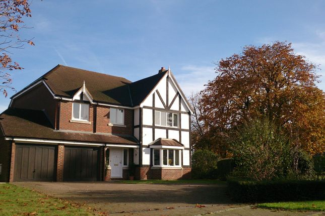 Thumbnail Detached house to rent in Foxon Close, Caterham