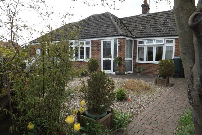 Thumbnail Detached bungalow to rent in Autumn Close, Thetford