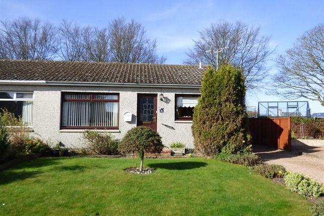 Thumbnail Bungalow for sale in Bow Butts, Crail, Fife