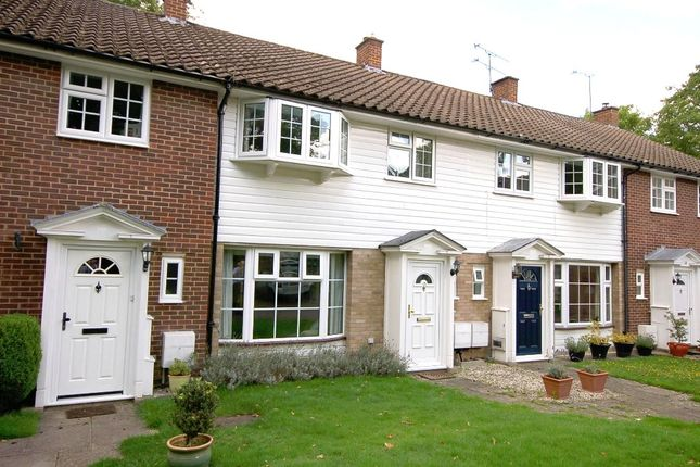 Thumbnail Terraced house for sale in Pinewood Gardens, Bagshot
