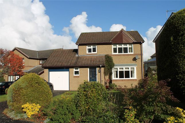 Thumbnail Detached house for sale in Oak Close, Hexham