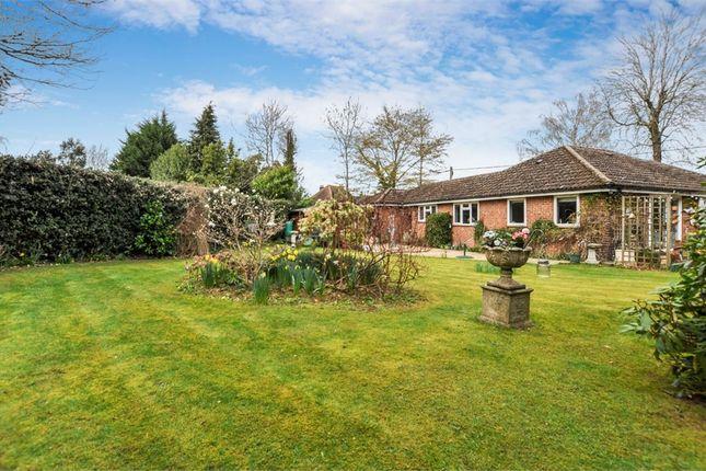 Thumbnail Detached bungalow for sale in 7A Chestnut Close, Amersham, Buckinghamshire