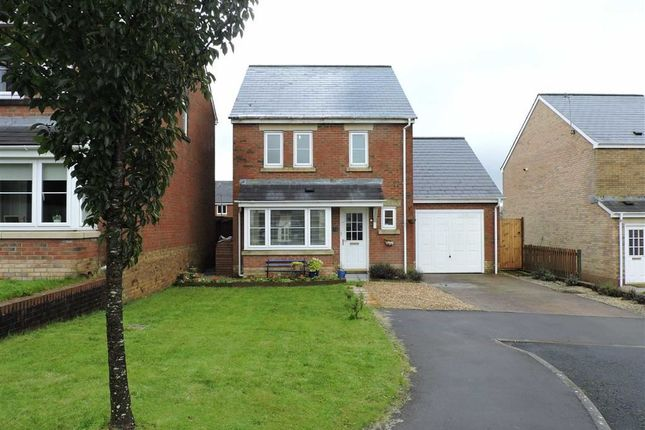 Thumbnail Detached house for sale in Clos Ael-Y-Bryn, Penygroes, Llanelli