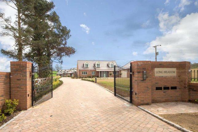 Thumbnail Detached house for sale in Long Meadow, Long Lane, Toddington