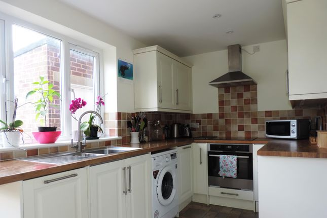 Thumbnail Property to rent in St. Leonards Road, Winchester