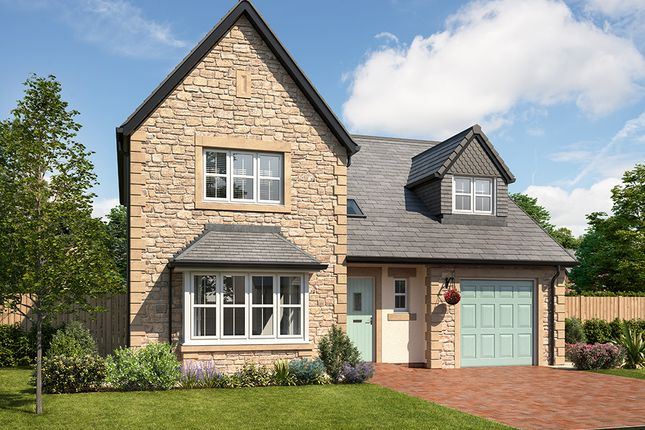"""Thumbnail Detached house for sale in """"Taunton"""" at Mayfield Avenue, Throckley, Newcastle Upon Tyne"""