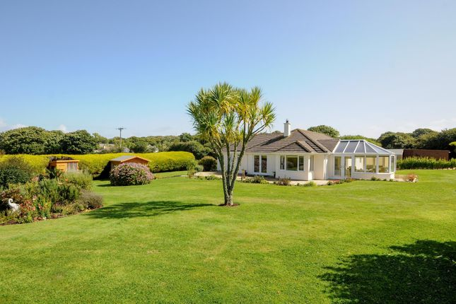 Thumbnail Property for sale in Perran Downs, Goldsithney, Penzance, Cornwall