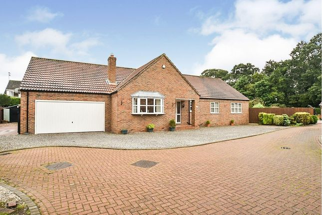 Thumbnail Bungalow for sale in Park Row, Sproatley, Hull, East Yorkshire