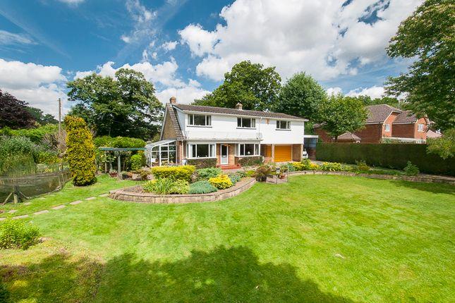 Thumbnail Detached house for sale in Dickley Lane, Lenham