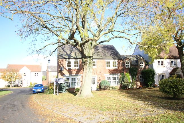 Thumbnail Detached house to rent in Wells Green, Barton, Richmond