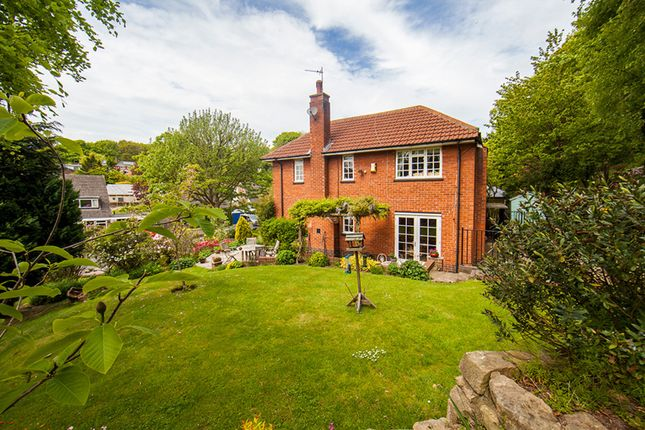 Thumbnail Detached house for sale in Thorp Avenue, Morpeth