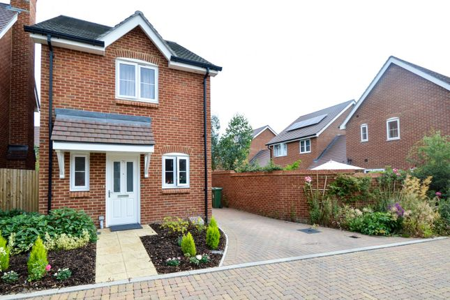 Thumbnail Detached house to rent in Daux Avenue, Billingshurst