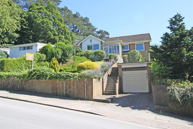Thumbnail Detached bungalow for sale in Lower Argyll Road, Exeter