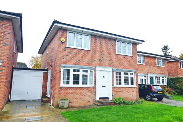 Thumbnail Detached house for sale in Birchwood Grove, Hampton