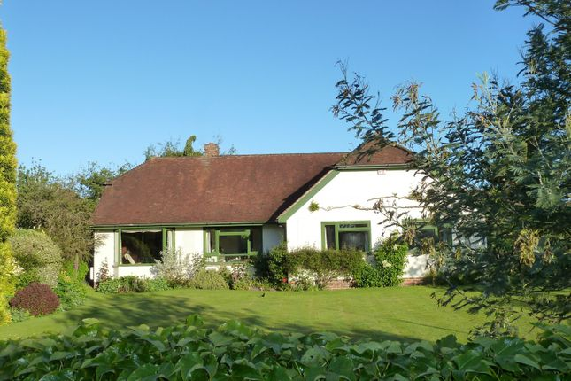 Detached bungalow for sale in Itchenor, Nr Chichester