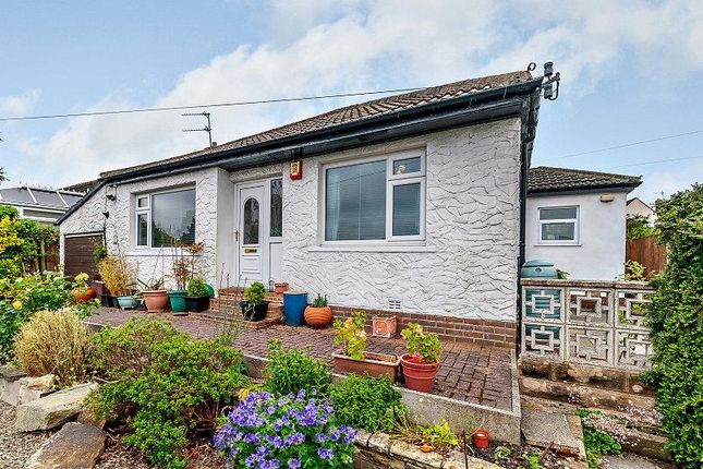 Thumbnail Detached bungalow for sale in Briarfield Close, Idle, Bradford