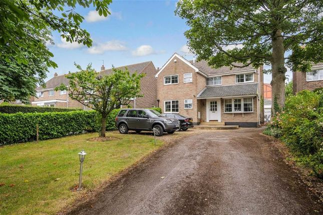 Thumbnail Detached house to rent in Yew Tree Gardens, Harrogate, North Yorkshire