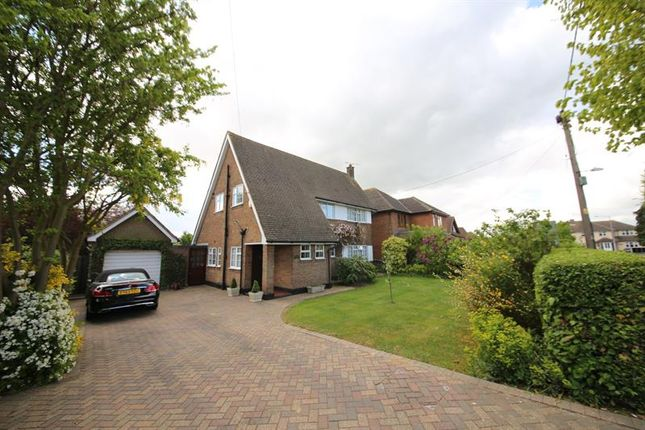 Thumbnail Detached house for sale in Branksome Avenue, Stanford-Le-Hope