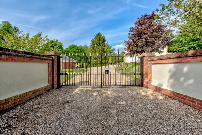 Thumbnail Detached house for sale in Lamb Lane, Sible Hedingham, Halstead