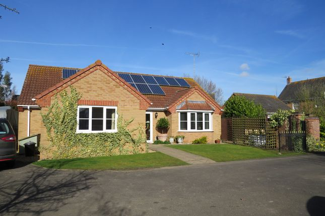 Thumbnail Detached bungalow for sale in Kiln Drive, Tydd St. Mary, Wisbech